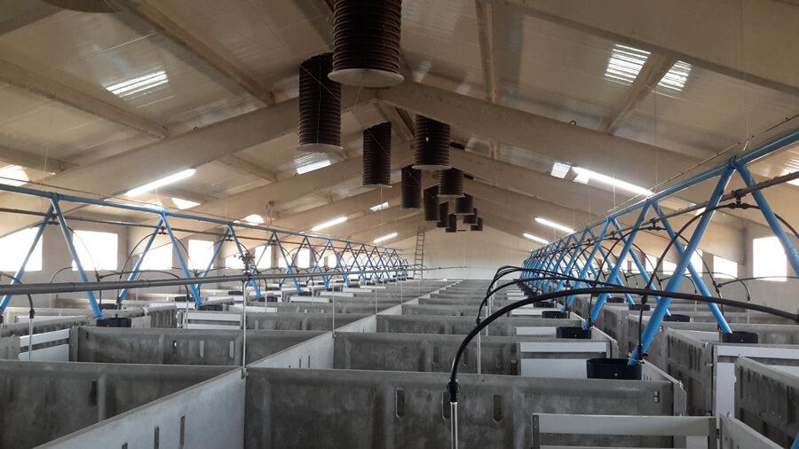 interior granja